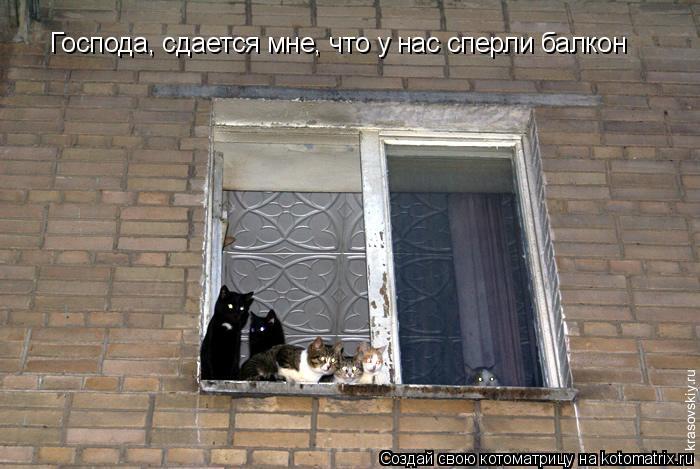 Котоматрица: Господа, сдается мне, что у нас сперли балкон