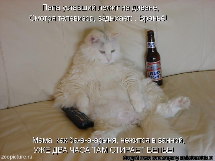 """Котоматрица: Папа уставший лежит на диване,  Смотря телевизор, вздыхает: """" Враньё!""""   Мама, как ба-а-а-арыня, нежится в ванной,  УЖЕ ДВА ЧАСА ТАМ СТИРАЕТ БЕЛ"""