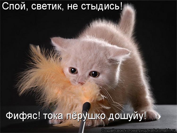 Котоматрица: Спой, светик, не стыдись! Фифяс! тока пёрушко дошуйу!