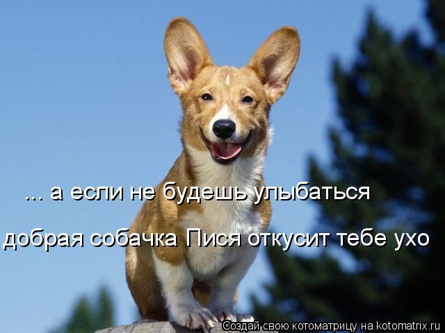 Котоматрица: ... а если не будешь улыбаться добрая собачка Пися откусит тебе ухо
