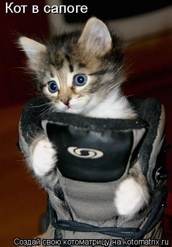 Котоматрица: Кот в сапоге