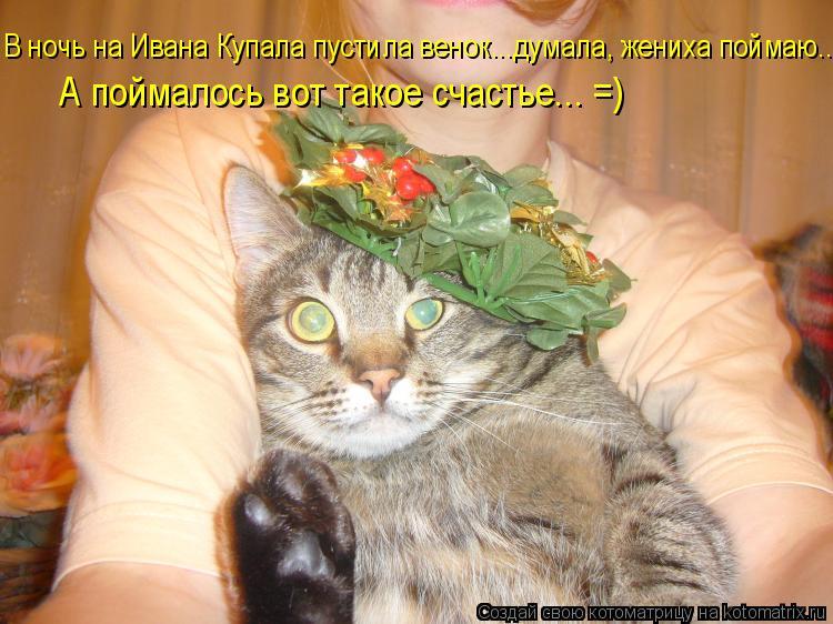 Котоматрица: В ночь на Ивана Купала пустила венок...думала, жениха поймаю.. А поймалось вот такое счастье... =)
