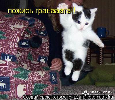 Котоматрица: ложись гранааата!!