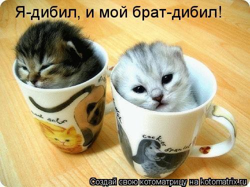 http://kotomatrix.ru/images/lolz/2008/12/29/fk.jpg