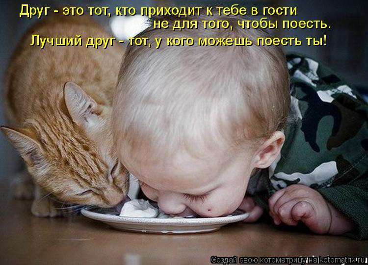 Котоматрица: Друг - это тот, кто приходит к тебе в гости не для того, чтобы поесть. Лучший друг - тот, у кого можешь поесть ты!