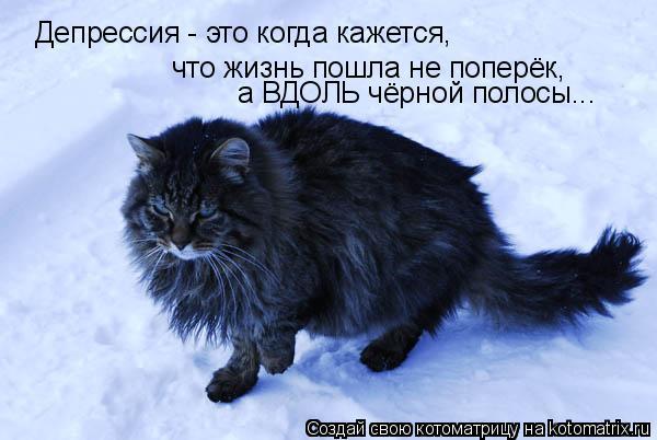 Котоматрица: Депрессия - это когда кажется,  что жизнь пошла не поперёк, а ВДОЛЬ чёрной полосы...