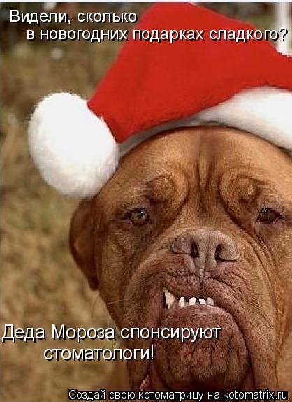 Котоматрица: Видели, сколько  в новогодних подарках сладкого? Деда Мороза спонсируют стоматологи!