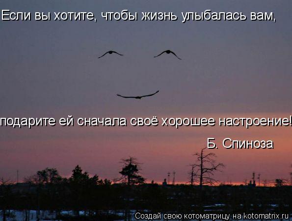 Котоматрица: Если вы хотите, чтобы жизнь улыбалась вам, подарите ей сначала своё хорошее настроение! Б. Спиноза
