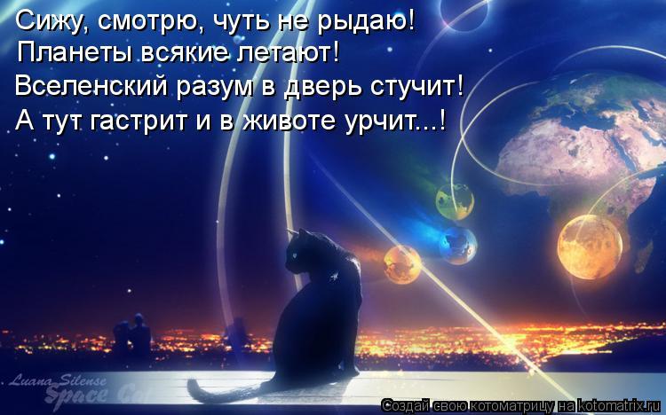 Котоматрица: Сижу, смотрю, чуть не рыдаю! Планеты всякие летают! Вселенский разум в дверь стучит! А тут гастрит и в животе урчит...!