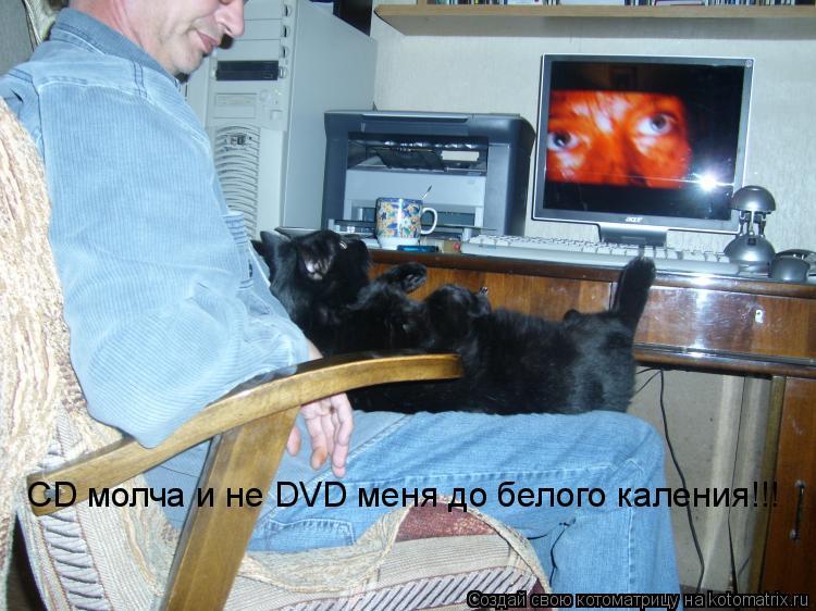 Котоматрица: СD молча и не DVD меня до белого каления!!!