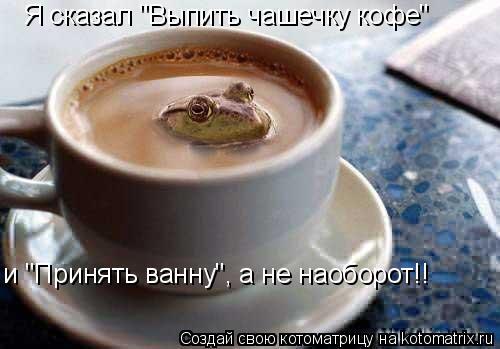 """Котоматрица: Я сказал """"Выпить чашечку кофе""""  и """"Принять ванну"""", а не наоборот!!"""