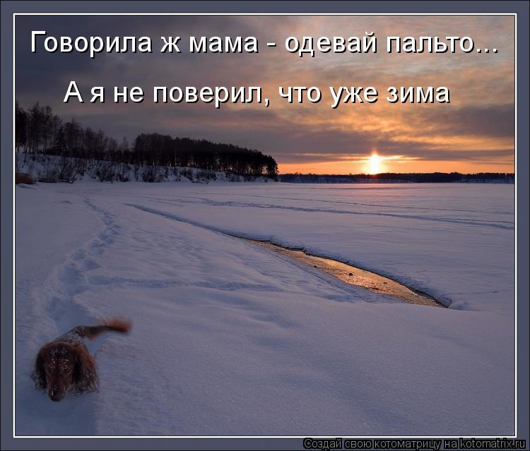 Котоматрица: Говорила ж мама - одевай пальто... А я не поверил, что уже зима