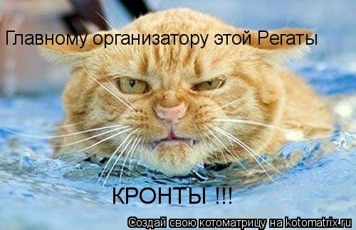 Котоматрица: Главному организатору этой Регаты КРОНТЫ !!!