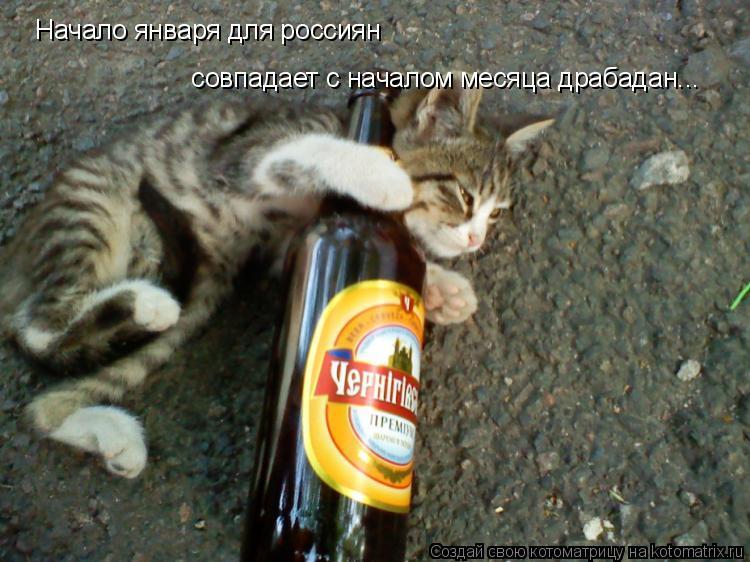 Котоматрица: Начало января для россиян  совпадает с началом месяца драбадан...