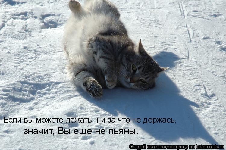 Котоматрица: Если вы можете лежать, ни за что не держась, значит, Вы еще не пьяны.