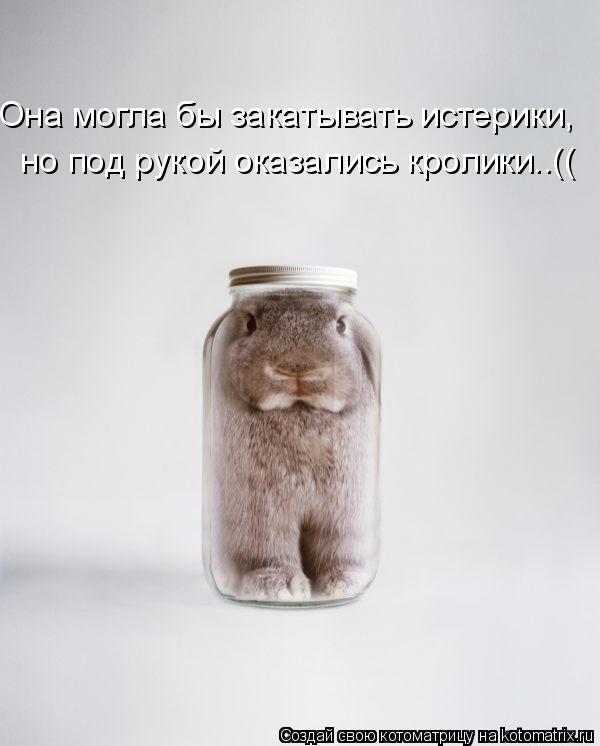 Котоматрица: Она могла бы закатывать истерики, но под рукой оказались кролики..((