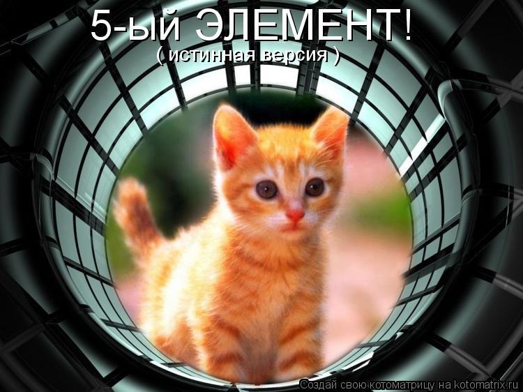 Котоматрица: 5-ый ЭЛЕМЕНТ! ( истинная версия )