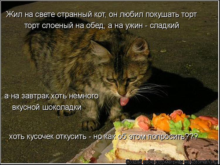 Котоматрица: Жил на свете странный кот, он любил покушать торт торт слоеный на обед, а на ужин - сладкий а на завтрак хоть немного вкусной шоколадки хоть к