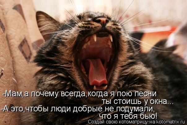 Котоматрица: -Мам,а почему всегда,когда я пою песни ты стоишь у окна... -А это,чтобы люди добрые не подумали, что я тебя бью!