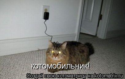 Котоматрица: котомобильник!