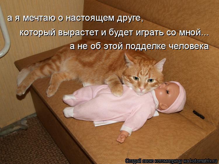 Котоматрица: а я мечтаю о настоящем друге,  который вырастет и будет играть со мной... а не об этой подделке человека
