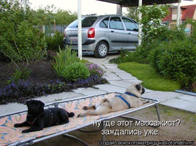 http://kotomatrix.ru/images/lolz/2009/01/08/PI.jpg