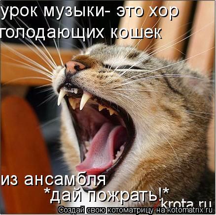 Котоматрица: урок музыки- это хор  голодающих кошек из ансамбля *дай пожрать!*