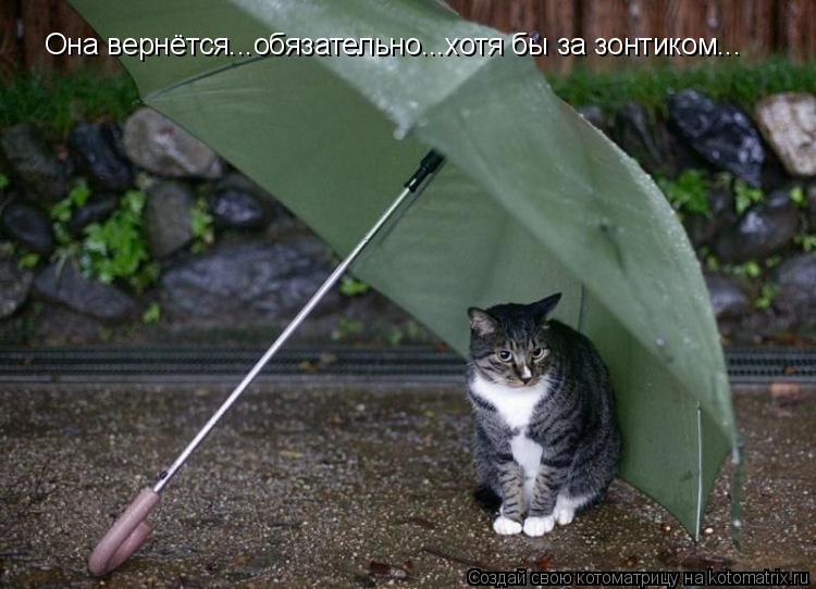 Котоматрица: Она вернётся...обязательно...хотя бы за зонтиком...