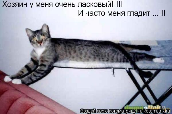 Котоматрица: Хозяин у меня очень ласковый!!!!! И часто меня гладит ...!!!