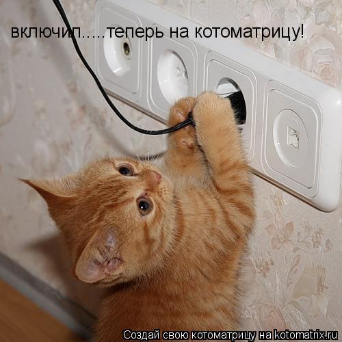 Котоматрица: включил.....теперь на котоматрицу!