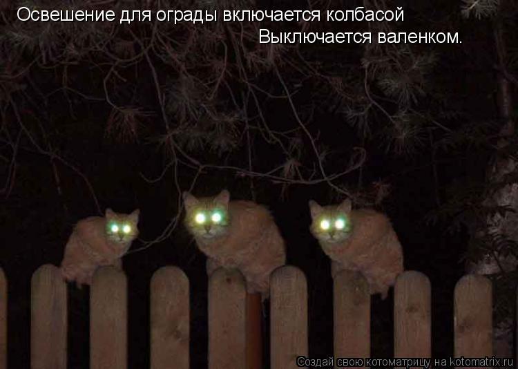 http://kotomatrix.ru/images/lolz/2009/01/10/D4.jpg