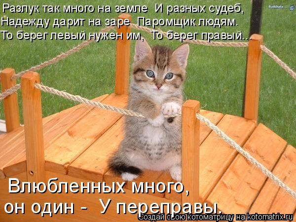 http://kotomatrix.ru/images/lolz/2009/01/10/XL.jpg