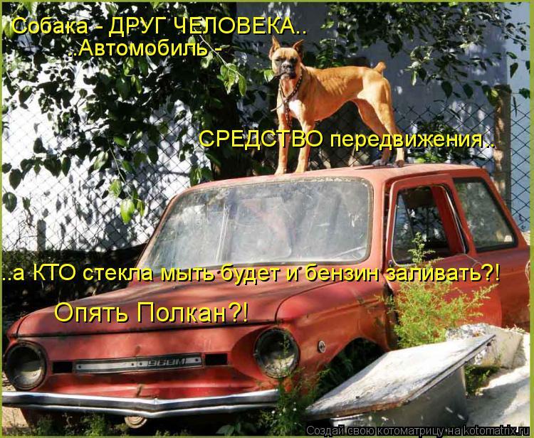 Котоматрица: Собака - ДРУГ ЧЕЛОВЕКА.. ..Автомобиль - СРЕДСТВО передвижения.. ..а КТО стекла мыть будет и бензин заливать?! Опять Полкан?!