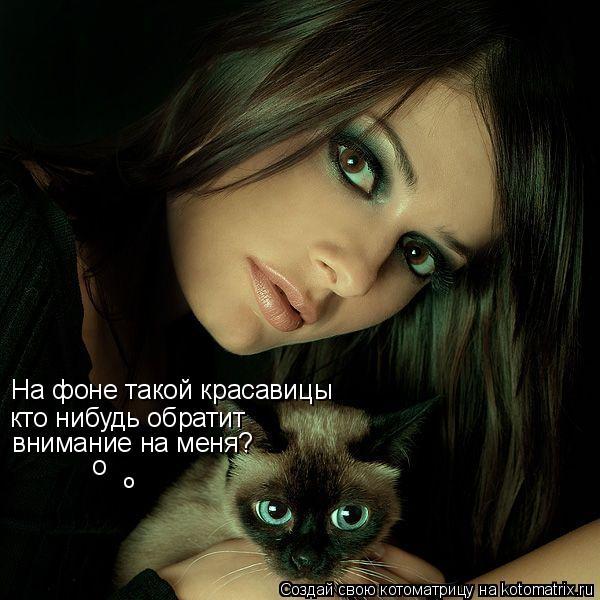 Котоматрица: На фоне такой красавицы кто нибудь обратит  внимание на меня? о о