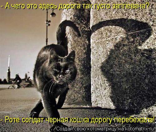 Котоматрица: - А чего это здесь дорога так густо заплевана?  - Роте солдат черная кошка дорогу перебежала!