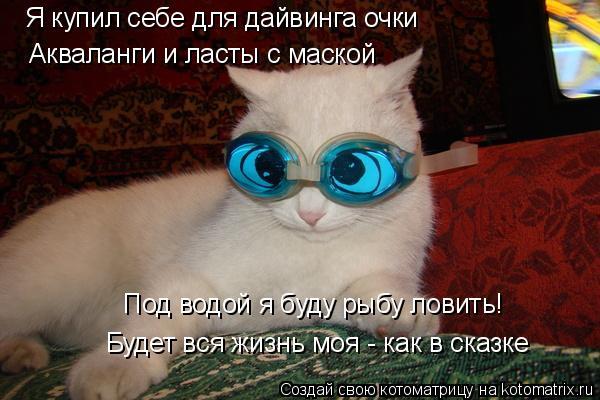 Котоматрица: Я купил себе для дайвинга очки Акваланги и ласты с маской Под водой я буду рыбу ловить! Будет вся жизнь моя - как в сказке