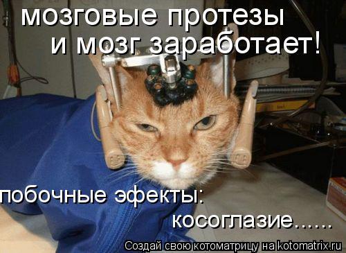 Котоматрица: мозговые протезы и мозг заработает! побочные эфекты: косоглазие......