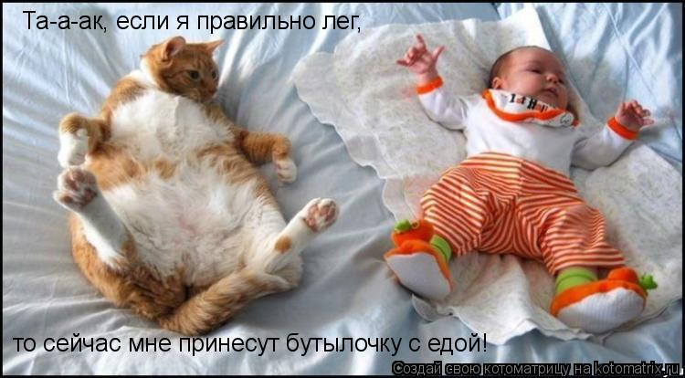 Котоматрица: Та-а-ак, если я правильно лег, то сейчас мне принесут бутылочку с едой!