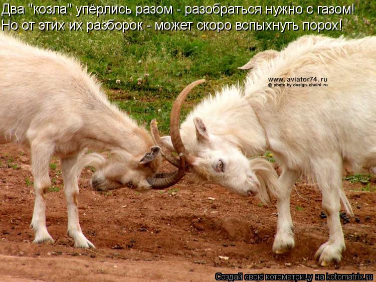 """Котоматрица: Два """"козла"""" упёрлись разом - разобраться нужно с газом! Но от этих их разборок - может скоро вспыхнуть порох!"""
