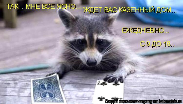 Котоматрица: ТАК... МНЕ ВСЕ ЯСНО... ЖДЕТ ВАС КАЗЕННЫЙ ДОМ... ЕЖЕДНЕВНО... С 9 ДО 18...