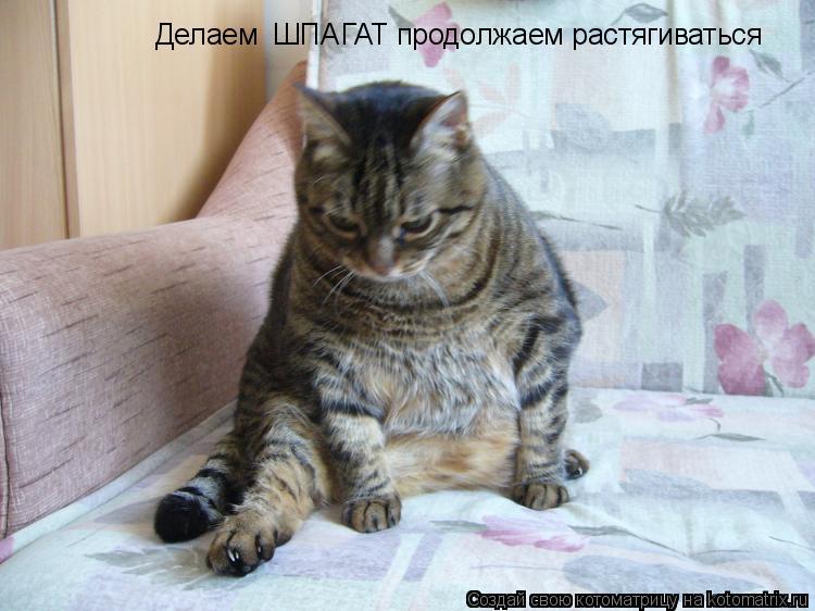 Фото растянутой киски при шпагате 1 фотография