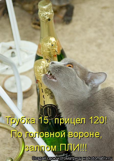 Котоматрица: Трубка 15, прицел 120!  По головной вороне,  залпом ПЛИ!!!
