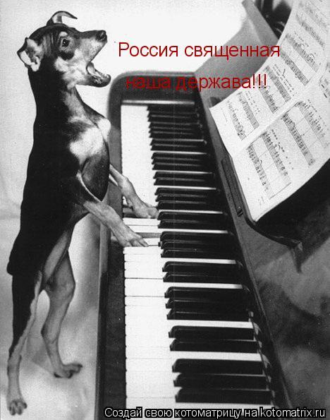 Котоматрица: наша держава!!! Россия священная
