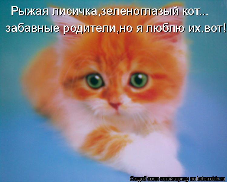 Котоматрица: Рыжая лисичка,зеленоглазый кот... забавные родители,но я люблю их.вот!