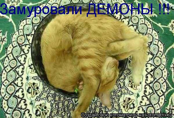 Котоматрица: Замуровали ДЕМОНЫ !!!