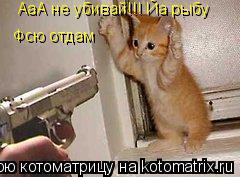 Котоматрица: АаА не убивай!!! Йа рыбу Фсю отдам