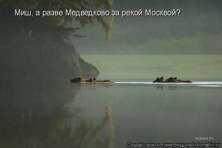 Котоматрица: Миш, а разве Медведково за рекой Москвой?