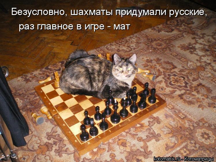Котоматрица: Безусловно, шахматы придумали русские, раз главное в игре - мат
