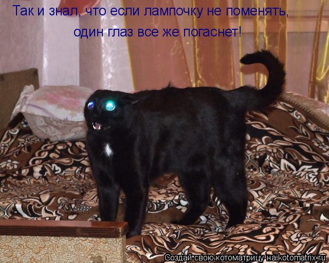 Котоматрица: Так и знал, что если лампочку не поменять, один глаз все же погаснет!