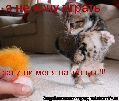 Котоматрица: я не хочу играть запиши меня на танцы!!!!!